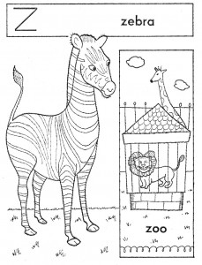 zebra-web