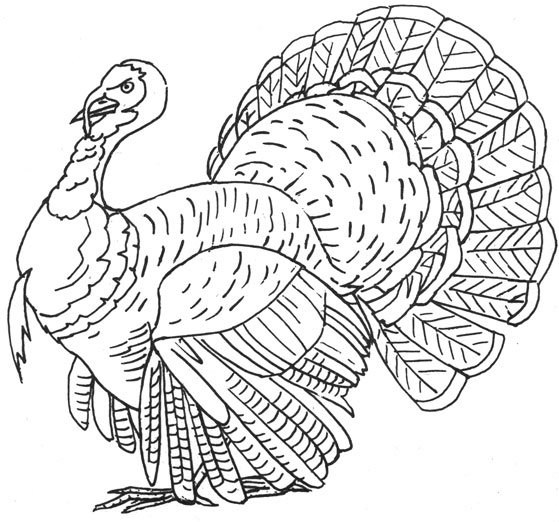 Vintage Thanksgiving Embroidery Transfers U2013 Q Is For Quilter