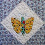Butterflies-33
