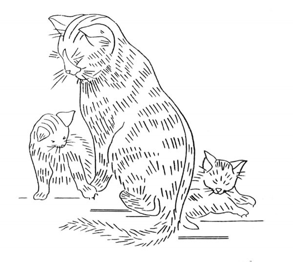 cat-and-kittens-embroidery-transfer