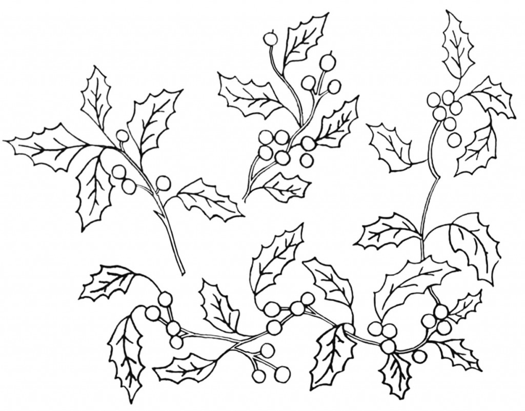Holly-Branches