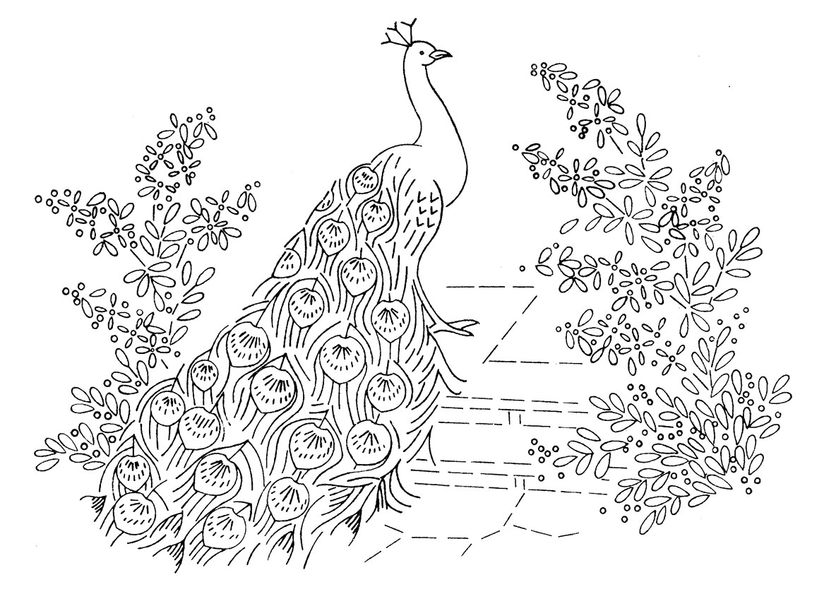 Laura wheeler design 664 peacocks q is for quilter for Coloring page peacock