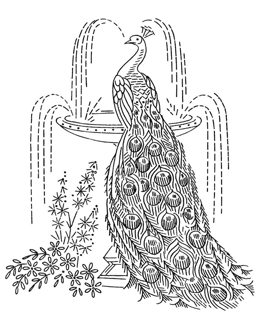 http://qisforquilter.com/wp-content/uploads/Laura-Wheeler-7107-peacocks-3.jpg