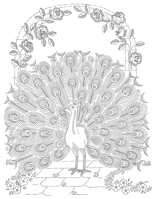 http://qisforquilter.com/wp-content/uploads/Laura-Wheeler-Transfer-601-Peacocks.jpg