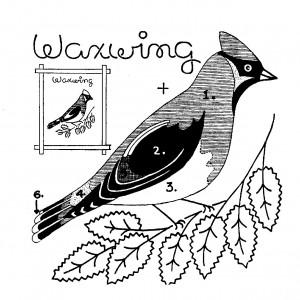 Quilt-of-Birds_3