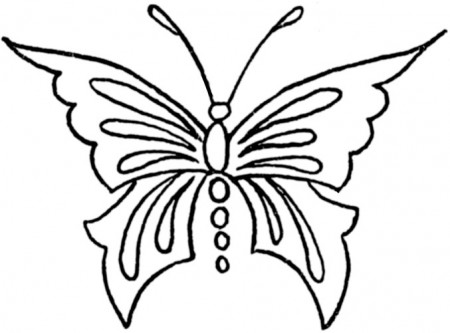 butterfly-embroidery-transfer-4