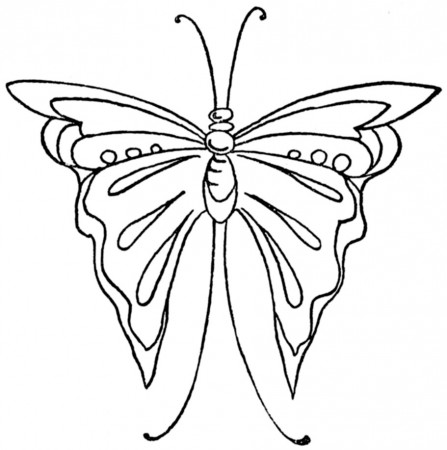 butterfly-embroidery-transfer-5