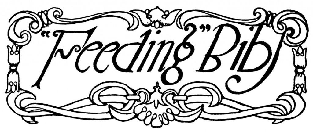 feeding-bibs